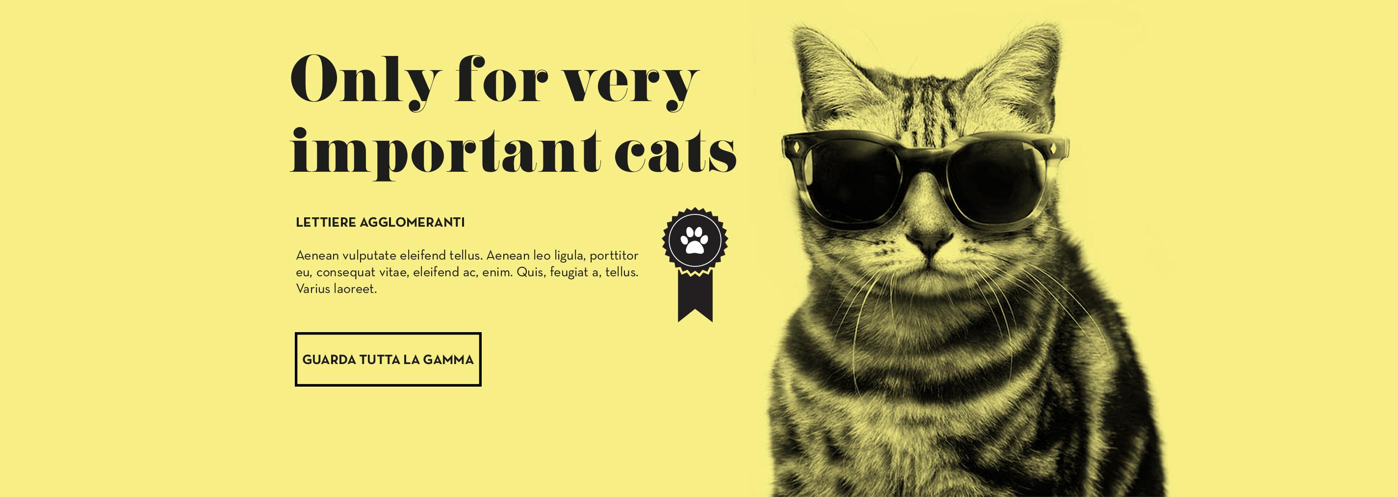 Lettiere agglomeranti per gatti importanti