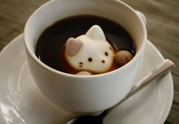 Gatti marshmallow