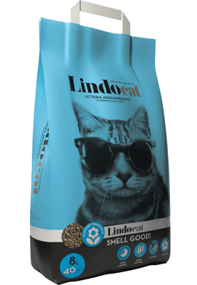 Lindocat Smell Good